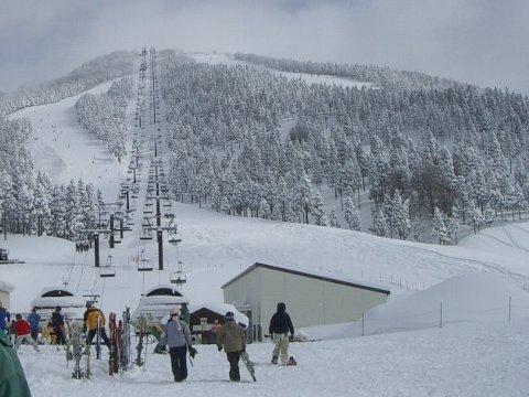 スキーに行って来ました