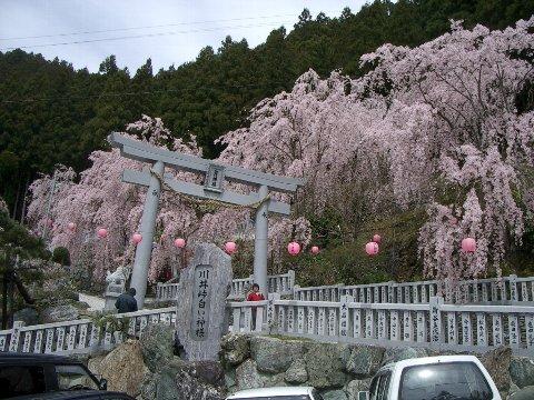 大川原月例会(4月)