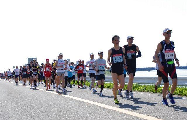 徳島マラソン応援
