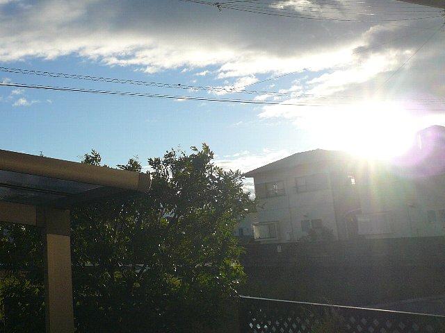 台風の休日